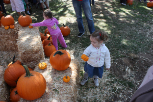 Kidspace Pumpkin Patch