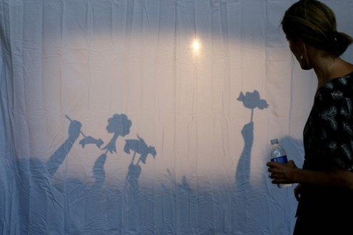 shadowpuppets-495x330