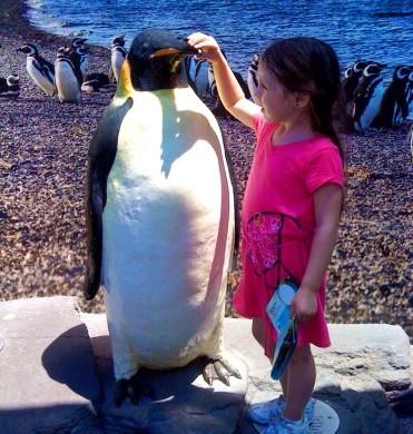 penguinphoto-371x495