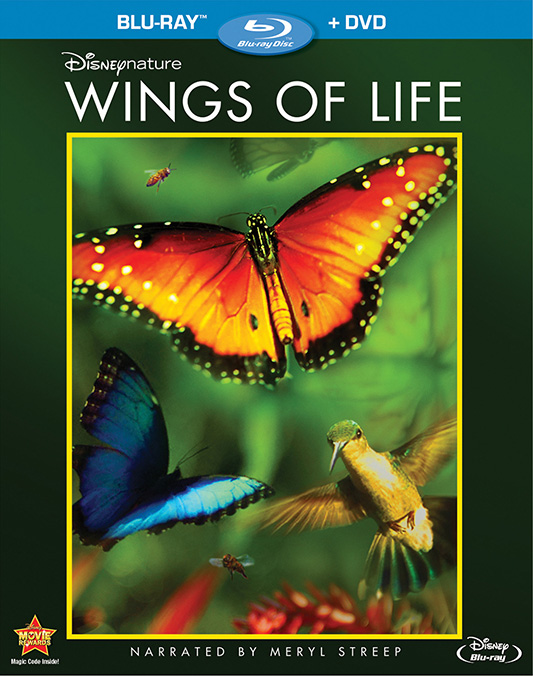 Disneynature_Wings_Of_Life_