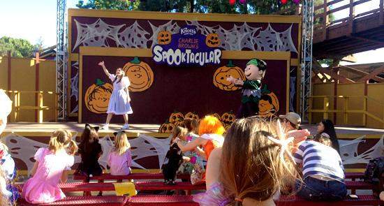 camp-spooky-knott1