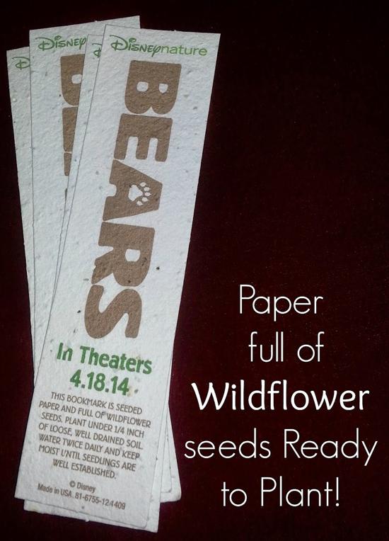 disneynatures-bears seeds