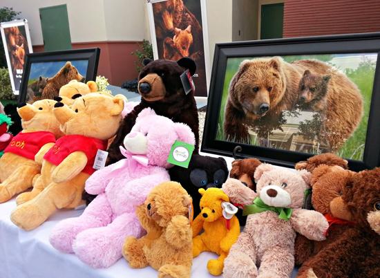 disneynatures-bears teddy