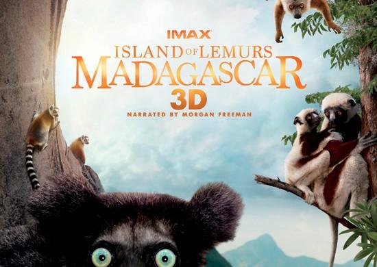 island-LEMUR-madagascar