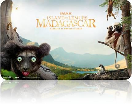madagscar_lemurs