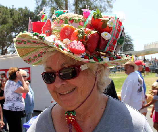 sscbloggers-hat