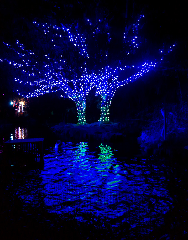 Los Angeles Holiday Lights, Family Holiday Fun, Los Angeles Zoo lights, family entertainment los angeles