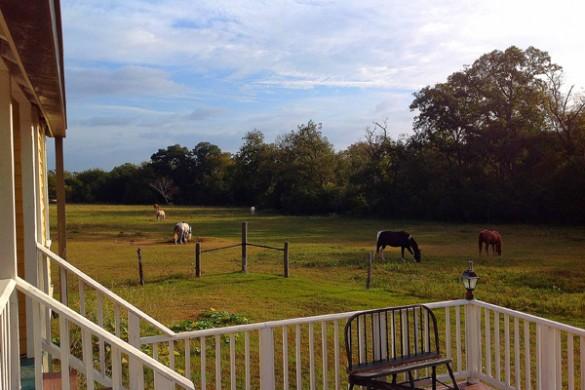 TX-Brenham-Texas-Ranch-Life