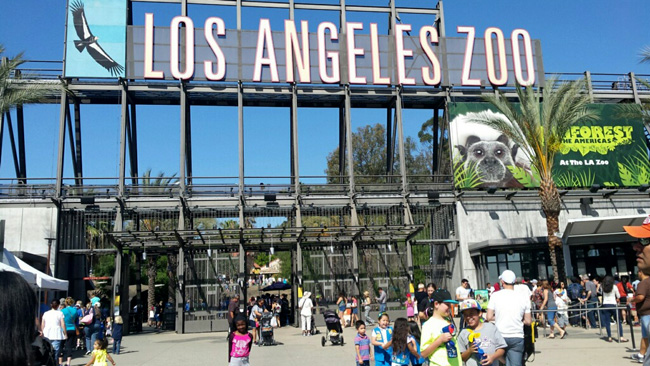 los-angeles-zoo-paddington