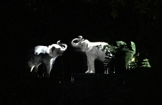 la-zoo-lights-elephants