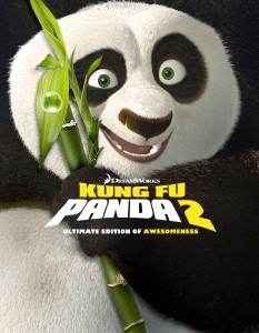 Kung Fu Panda 2, Kung Fu