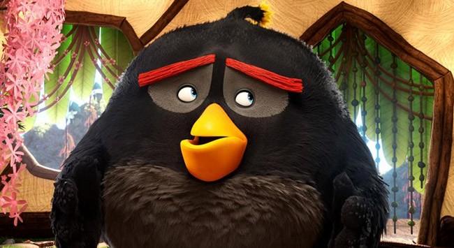 angry-birds-mcbride