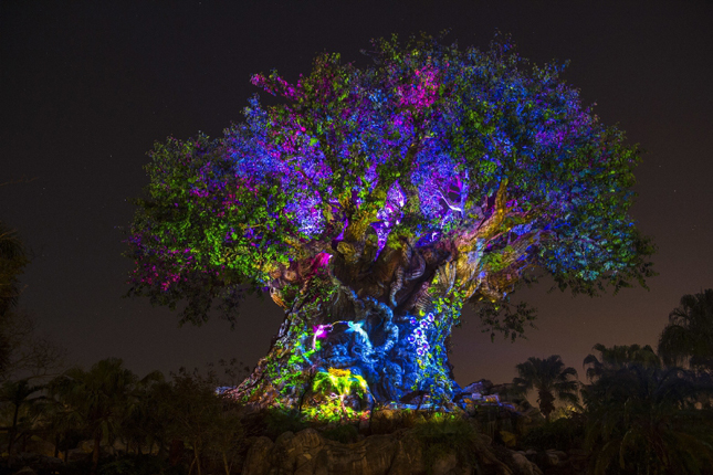 "Disney's Animal Kingdom's iconic Tree of Life will undergo extraordinary ""awakenings"" throughout each evening as the animal spirits are brought to life by magical fireflies that reveal colorful stories of wonder and enchantment. Projections of nature scenes take on a magical quality as they appear to dramatically emanate from within the Tree of Life. (David Roark, photographer) (PRNewsFoto/Walt Disney World Resort)"