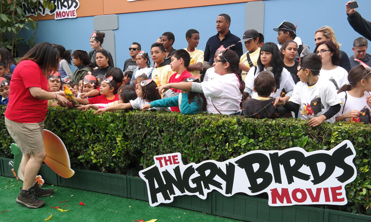 The Angry Birds Movie Premiere, Angry Birds, Rovio Entertainment, Angry Birds release date