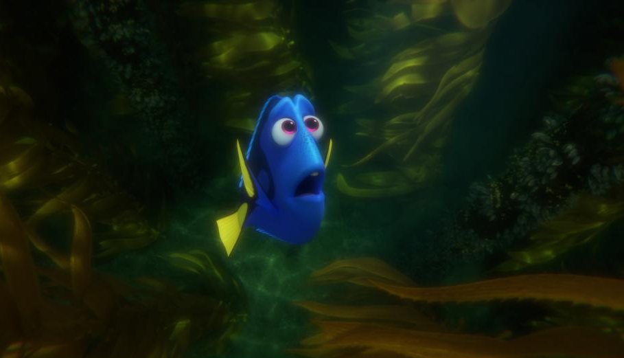 finding dory review, Finding Dory emotional, Blue Tang facts