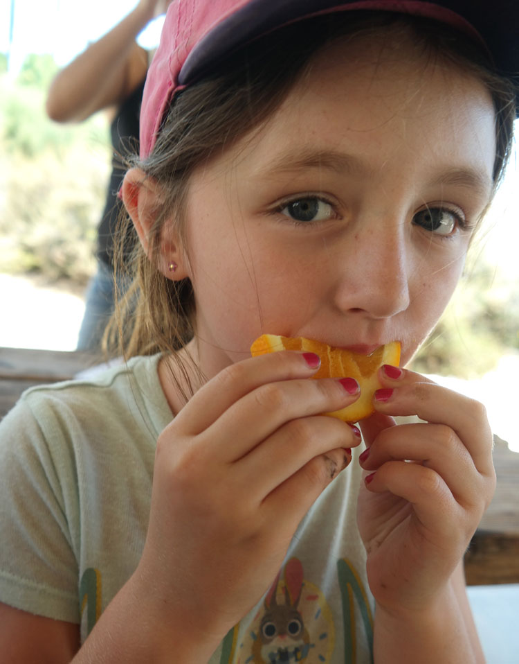 California Citrus State Historic Park, Free Family Friendly Riverside, Things to do in Riverside, Foodie