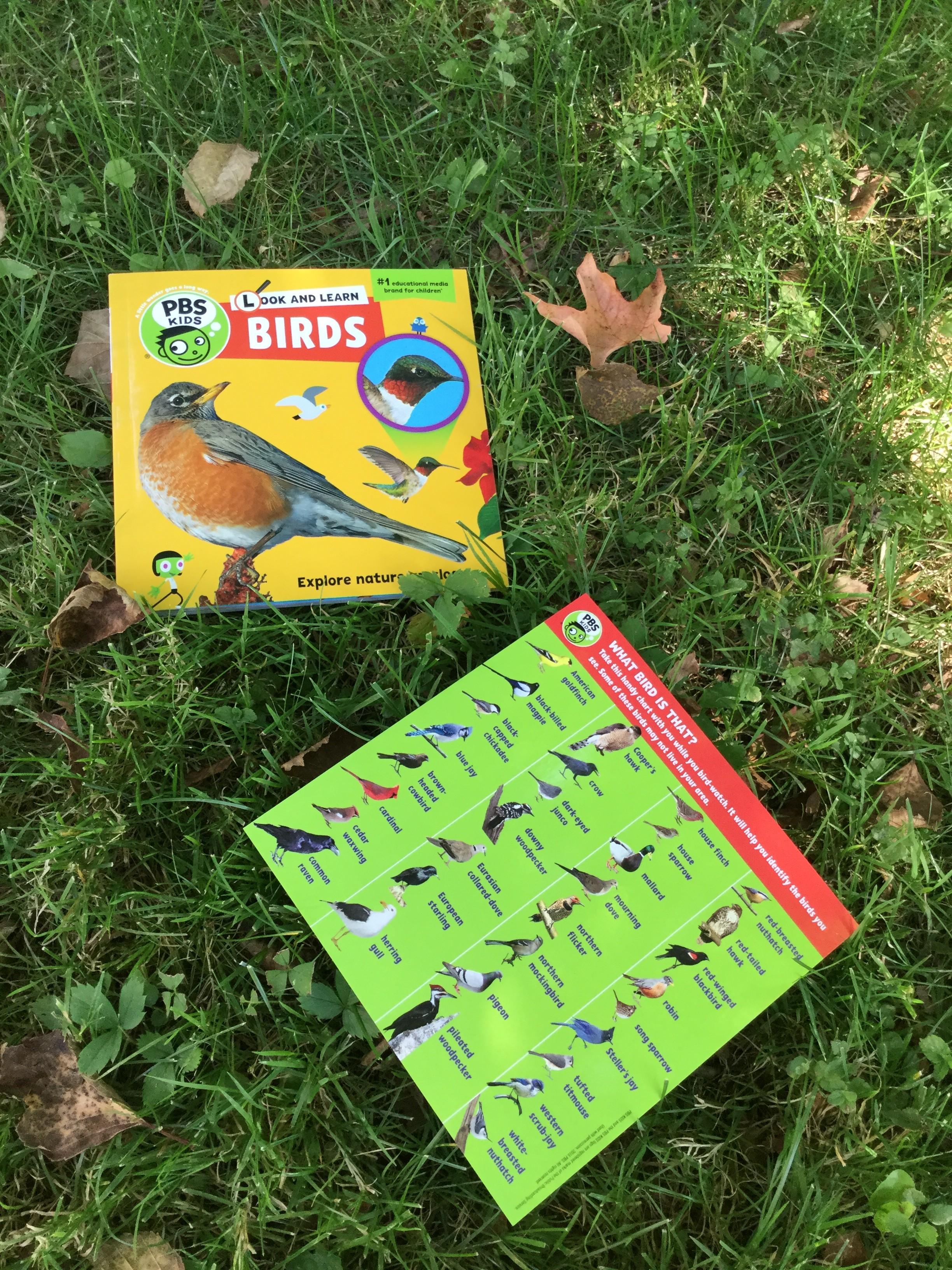 PBS Birds 1
