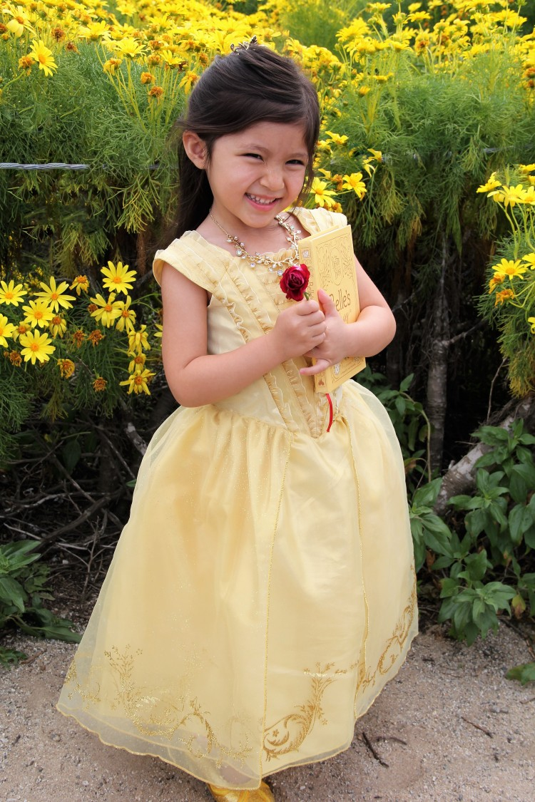 disney store belle costume