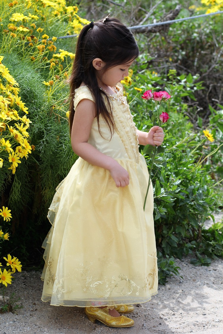 disney store belle costume 8