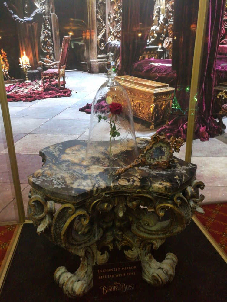 Rose from Beauty and the Beast, Beauty and the Beast props, Dan Stevens at Disneyland Resort, Grey Stuff