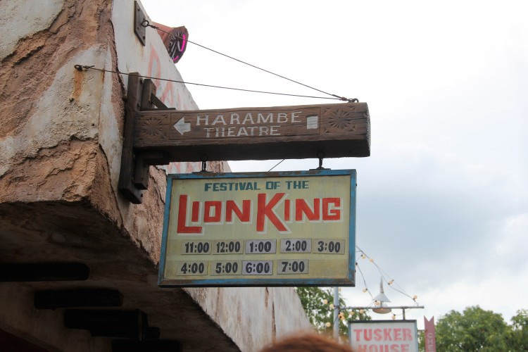 festival of the lion king 8