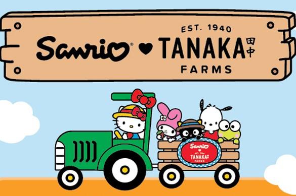 Tanaka Farms, Orange Country fall events, hello kitty tanaka farms
