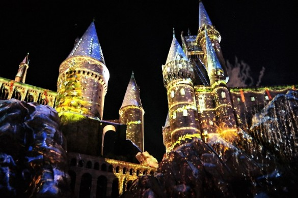 Wizarding World harry potter lights