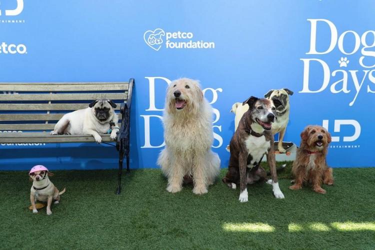 dog days premiere actors