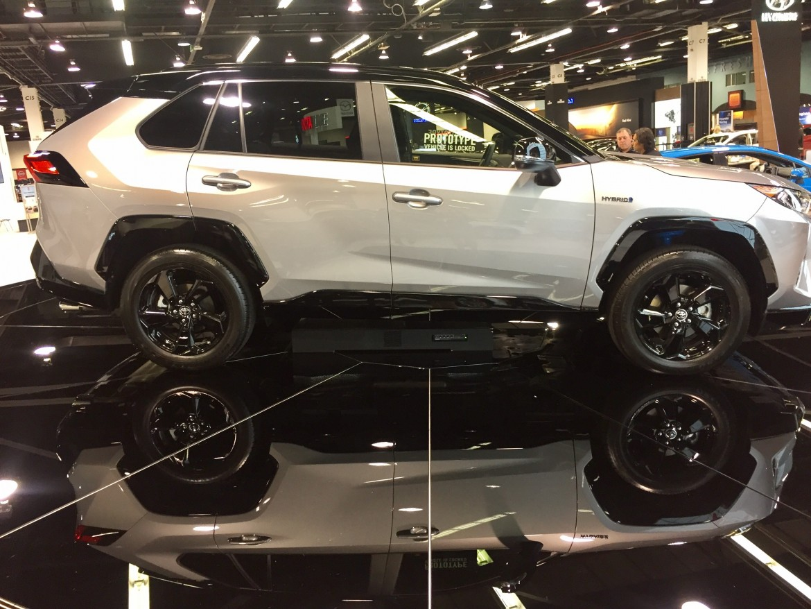 2019 Rav4 adventure trim