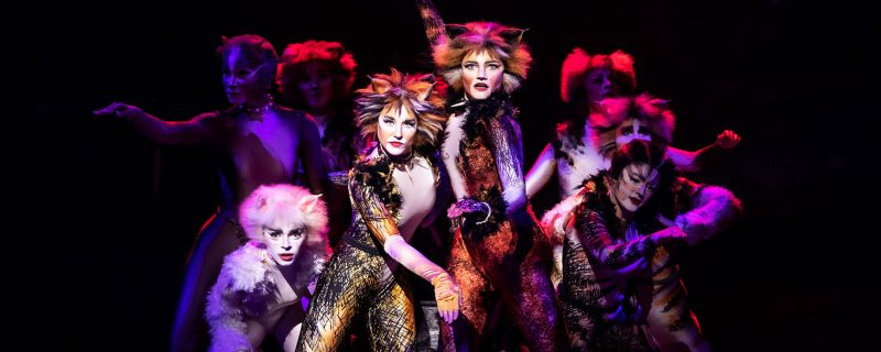 Cats, Hollywood Pantages theater