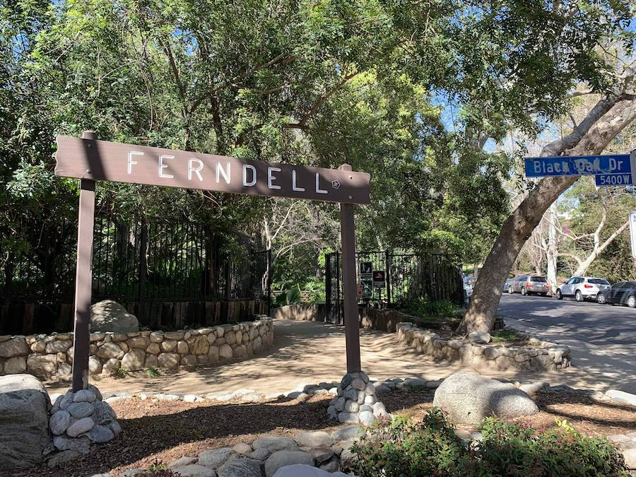 griffith park hikes ferndell