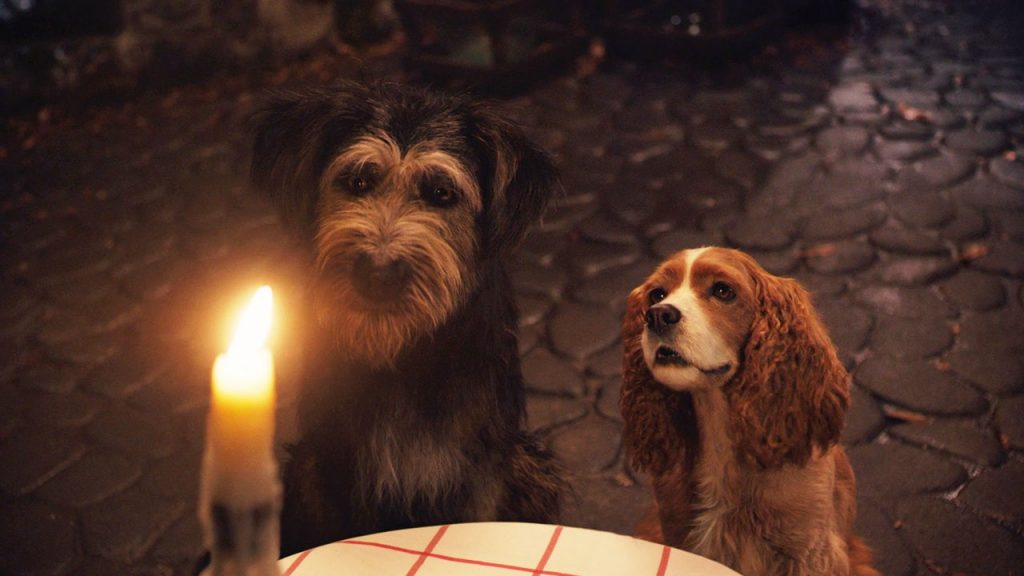 lady and the tramp, disney plus