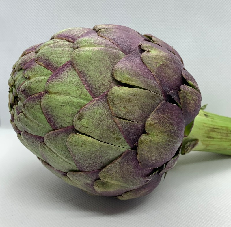 steamed purple artichoke