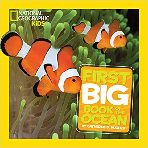 national geographic kids books, ocean
