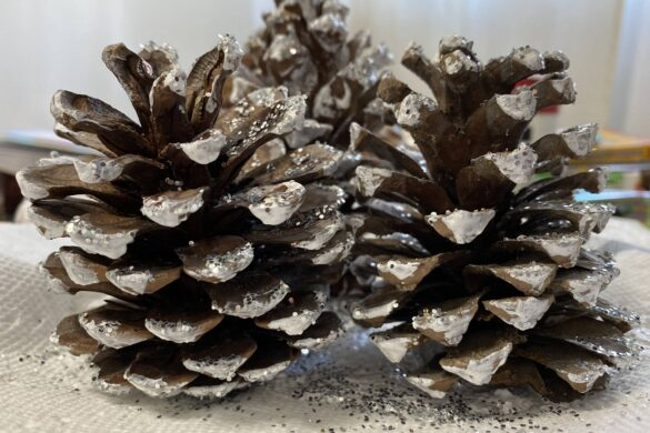 frosty pinecone craft