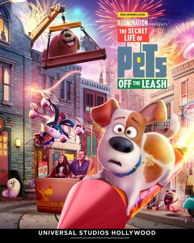 universal studios hollywood, secret life of pets