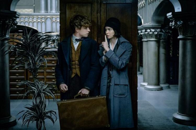 Fantastic Beasts review, Fantastic Beasts, Harry Potter, Fantastic Beasts November 18