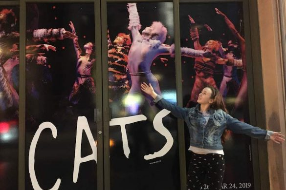 cats hollywood antages